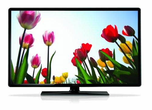 Samsung UN19F4000 19-Inch 720p 60Hz LED TV (2013 Model)