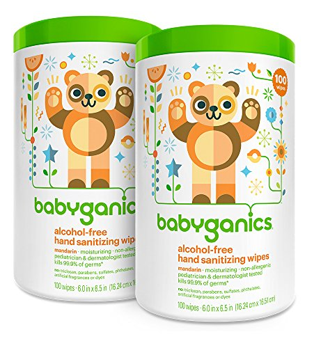 Babyganics Alcohol Free Hand Sanitizer Wipes, Mandarin, 100 Count Canister (Pack of 2) - 1