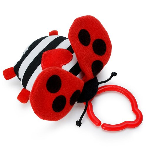 Tiny Love Lady Bug Squeaker Toy