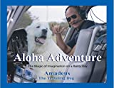 Aloha Adventure: The Magic Of Imagination On A Rainy Day