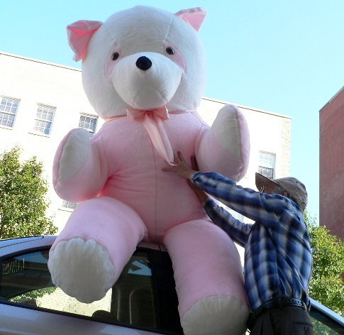 Buy 8 FEET TALL GIANT STUFFED ** PINK ** PANDA BEAR – ABSOLUTELY HUMONGOUS AND SOFT AND VERY VERY VERY VERY BIG – AMERICAN MADE IN THE USA AMERICA