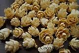 ~Coco Heart~ タマラックコーン ホワイト 25g  (木の実・ドライフラワー・クリスマス)