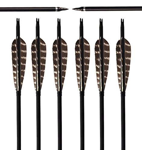 Zpy 32'' Turkey Feathers Carbon Fiber Targeting/practice Arrows with Replacement Screw-in Archery Broadheads (6 Pcs) (Feather Fletched Carbon Arrows compare prices)