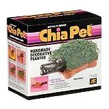 Chia Pet Handmade Decorative Planter- Crocodile