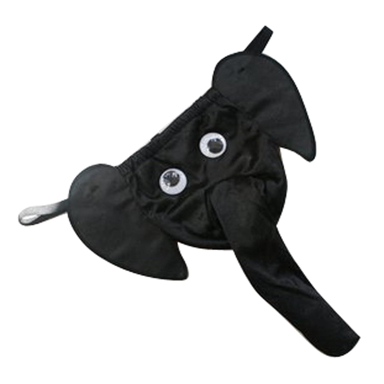 Стринги на слоне 3 фотография