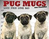 Pug Mugs Calendar: Good Pugs Gone Bad