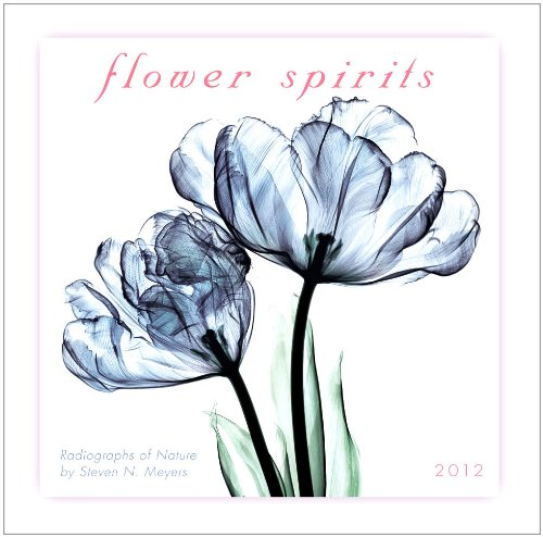 Flower Spirits 2012 Mini (calendar)