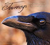 img - for Journeys: Healing Through Nature's Wisdom book / textbook / text book