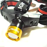 Zebralight H502 AA Flood Headlamp