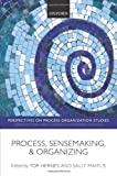 img - for Process, Sensemaking, and Organizing (Perspectives on Process Organization Studies) [Paperback] [2012] (Author) Tor Hernes, Sally Maitlis book / textbook / text book