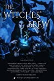 img - for The Witches' Brew Bundle: 20 Witchy Stories book / textbook / text book