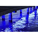 Green Blob Outdoors (Blue, Green, UV, White, or Color Changing) Pimp My Dock LED Lights DIY Premium 15,000 Lumen LED Under Dock Lighting Kit SMD5630 IP68 Completely Waterproof (Neon Blue 25ft) (Color: Neon Blue 25ft)