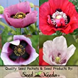 "500 Seeds, Somniferum Poppy ""Double Mixed"" (Papaver somniferum) Seeds By Seed Needs"