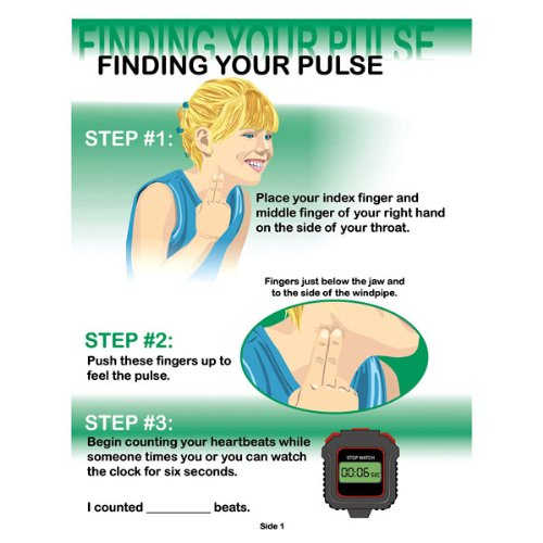 Nasco PE08020E Finding Your Pulse TearPad