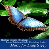 Healing Sounds of Nature: Tropical Rainforest At Night, Waterfall and Crickets