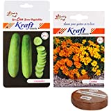 Flower And Vegetable Seeds Combo (2 In 1) With Cocopeat 100 Grams – Cosmos And Cucumber Hybrid By Kraft Seeds