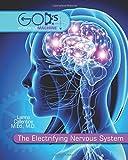 The Electrifying Nervous System (God