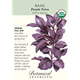 Basil Purple Petra Certified Organic Seeds 300 Seeds
