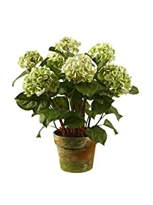 Potted hydrangeas color green artificial mixed flower arrangements - Care potted hydrangea ...