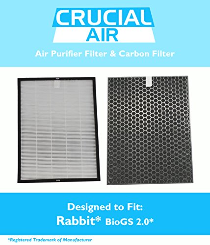 Air Filter & Carbon Filter Kit Fits Rabbit BioGS 2.0, SPA-550A & SPA-625A