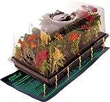 "Jump Start Hot House Mini Greenhouse w/Heat Mat, Tray, 72-Cell Insert, 7.5"" dome"