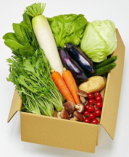 産地直送 岡山産 新鮮 野菜満載セット(野菜11品目)