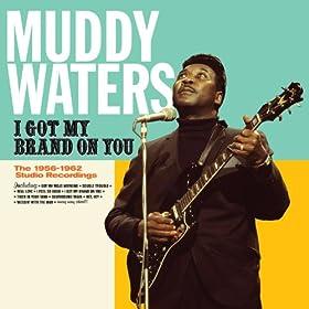 I Got My Brand on You. The 1956-1962 Studio Recordings