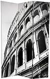 Oriental Furniture Printed Image Room Divider, 6-Feet Roman Coliseum and Venice Gondola Photo Print…
