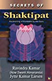 img - for Secrets of Shaktipat book / textbook / text book