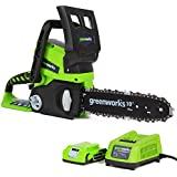 Greenworks Tools Set 2000007-A Tronçonneuse sans fil 24 V Lithium-ion