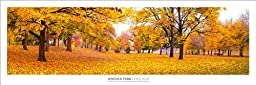 Chicago: Lincoln Park At Fall Panoramic Art Print Poster