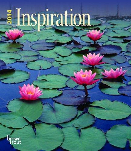 Inspiration 2014 Engagement