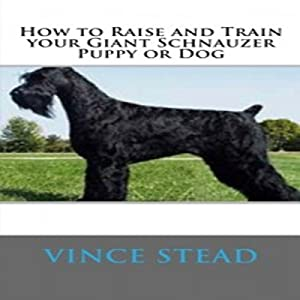 How to Raise and Train Your Giant Schnauzer Puppy or Dog