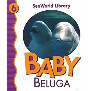Baby Beluga (Seaworld Library)