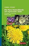 Image de SCHMEIL-FITSCHEN Die Flora Deutschlands und angrenzender Länder: Ein Buch zum Bestimmen aller wildw