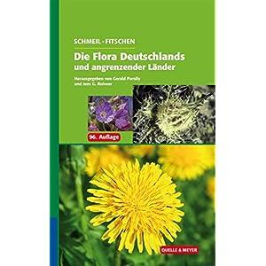 SCHMEIL-FITSCHEN Die Flora Deutschlands und angrenzender Länder: Ein Buch zum Bestimmen aller wildw