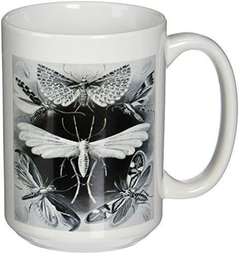 3drose-mug-80736-2-imagen-de-vintage-aleman-biologo-dibujo-de-las-polillas-taza-de-ceramica-15-ounce