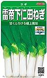 サカタのタネ 実咲野菜3873 雷帝下仁田ねぎ ネギ 00923873