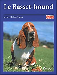 Le  basset-hound