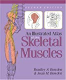 img - for An Illustrated Atlas of the Skeletal Muscles book / textbook / text book