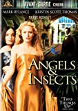 Angels &amp; Insects