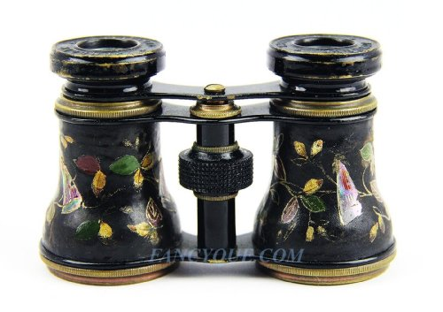 Antique French Opera Glasses Leather With Amazing Bee Flies Decorations # 78