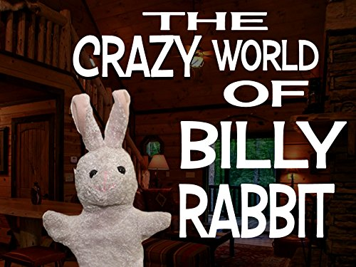 The Crazy World of Billy Rabbit