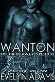 Wanton (For The Billionaire's Pleasure Book 2) (English Edition)