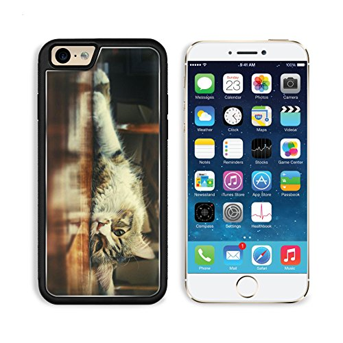 Floor Wood Indoors Cats Animals Apple Iphone 6 Tpu Snap Cover Premium Aluminium Design Back Plate Case Customized Made To Order Support Ready Msd Iphone_6 Professional Case Touch Accessories Graphic Covers Designed Model Sleeve Hd Template Wallpaper Photo front-567946