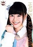 AKB48 公式生写真ポスター (A4サイズ) 第34弾【込山榛香】