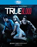 Image de True Blood - Season 1 [STANDARD EDITION] [Import anglais]