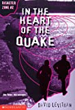 In the Heart of the Quake (Disaster Zone)
