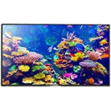 Panasonic TH-55CX400 140 cm (55) Ultra HD (4K) LED Television