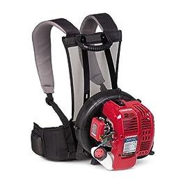 Troy-Bilt TB2BP 25cc 2-Cycle Gas Powered 150 MPH Backpack Blower